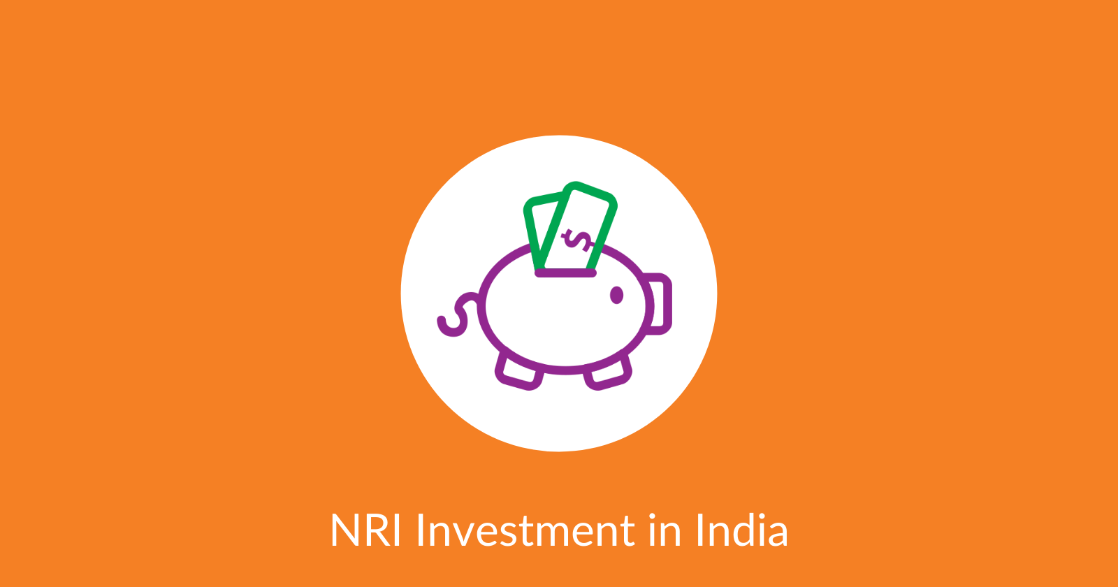 NRI Investment in India